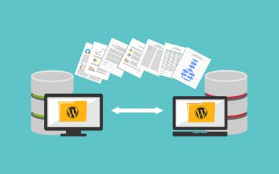 WEB Hosting i Domen